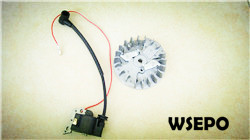 Quality Parts! Wholesale 38cc Gas Chainsaw flywheel+Coil Kit